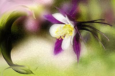 Like A Dove Art Print by K Powers Photography