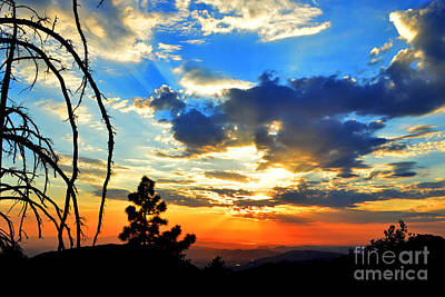Photograph - Like A Dream Idyllwild by Third Eye Perspectives Photographic Fine Art