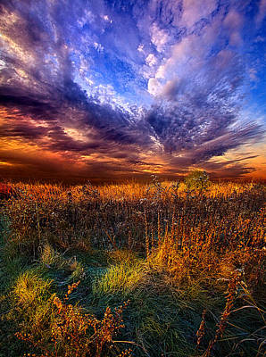 Like A Whisper In The Wind Art Print by Phil Koch