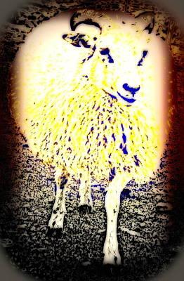 Belong Dead Photograph - When You Feel Like An Innocent Lamb  by Hilde Widerberg