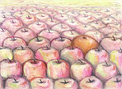 Drawing - Like Apples And Oranges by Shana Rowe Jackson