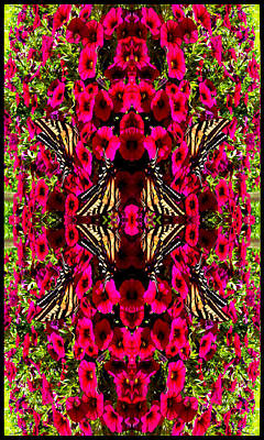 Photograph - Like Butterflies I Change by Deprise Brescia