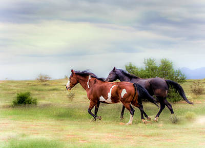 Photograph - Like The Wind by Anna Rumiantseva
