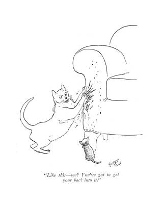 House Cats Drawing - Like This - See? You've Got To Get Your Back by Garrett Price