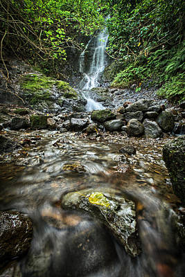 Photograph - Likeke Falls by Chris Multop