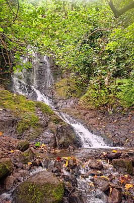 Photograph - Likeke Falls by Dan McManus