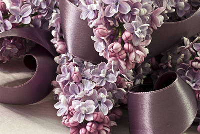 Victoria Magazine Style Photograph - Lilac And Ribbon Curls by Sandra Foster