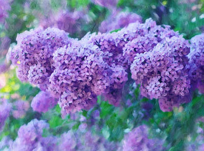 Floral Digital Art - Lilac Cadenza by Georgiana Romanovna