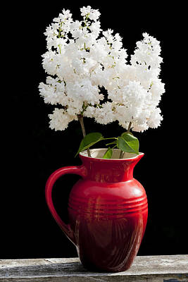 Photograph - Lilac Still Life by Alan L Graham