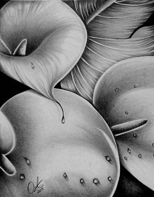 Drawing - Lilies 3 by Owen Lafon