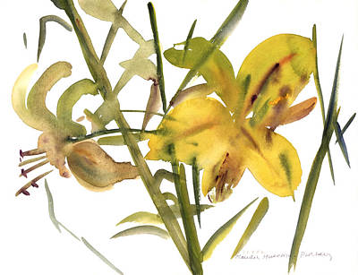 Water And Plants Painting - Lilies by Claudia Hutchins-Puechavy