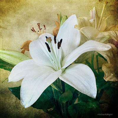 Lilies For Linda Art Print by Melissa Bittinger