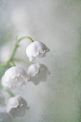 Lilies Of The Valley Print by Annie Snel