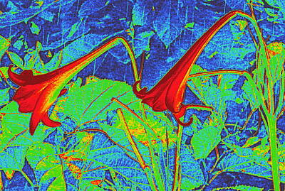 Trumpet Digital Art - Lilies Turned Red by Randall Weidner