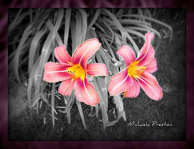 Photograph - Lilly In The Dark by Michaela Preston