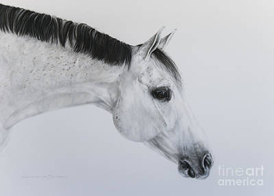 Gray Mare Pastel - Lilly by Joni Beinborn