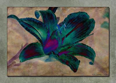 Lily 9 Art Print