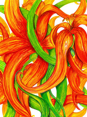 Lilies Drawings - Lily Abstract by Londie Benson