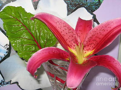 Photograph - Lily And Leaf by Marlene Rose Besso