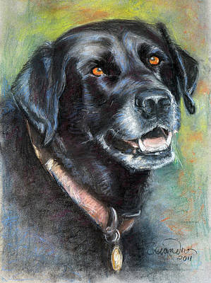 Lily- Black Labrador Retriever Art Print by Sciandra