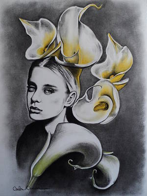 Drawing - Lily by Carla Carson