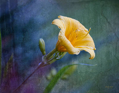 Lily In Blues And Greens Art Print