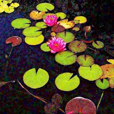 Painting - Lily Pads With Pink Flowers - Square by Lyn Voytershark