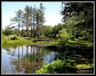 Photograph - Lily Pond And Bridge by Rose Santuci-Sofranko