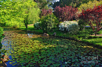 Lily Pond And Colorful Gardens Print by Kaye Menner