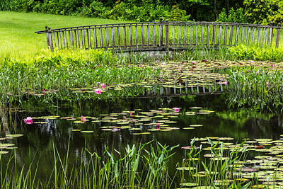 Photograph - Lily Pond Bridge by Susan Cole Kelly