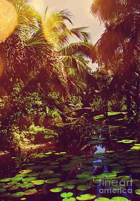 Photograph - Lily Pond I Nostalgia by Anita Lewis