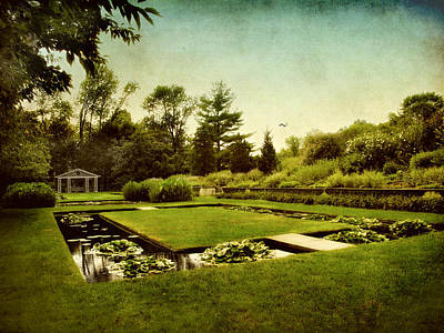 Flower Gardens Photograph - Lily Pond by Jessica Jenney