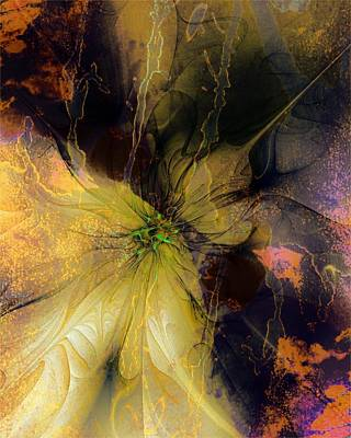 Lily Pond Reflections Art Print by Amanda Moore