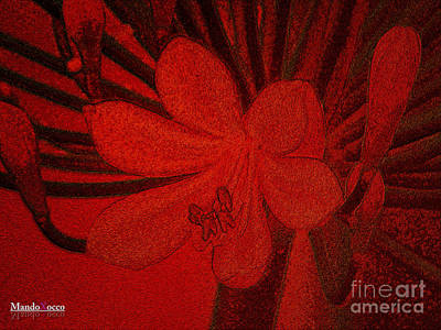 Lily Red Art Print