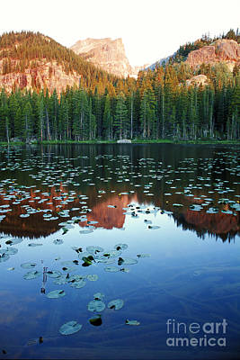 Photograph - Lilypad Pond With Hallet Peak by Teri Brown