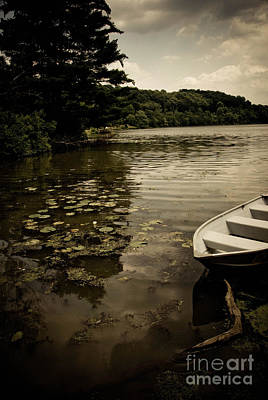 Rowboat Photograph - Lilypads In The Lake by Amy Cicconi