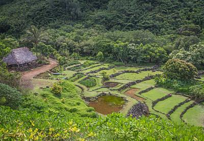 Photograph - Limahuli Garden Kauai by Roger Mullenhour