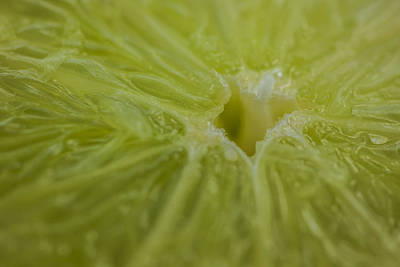 Photograph - Lime Food Macro by David Haskett II