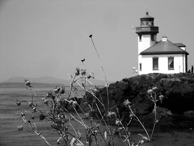 Photograph - Lime Kiln Lighthouse by Tarey Potter