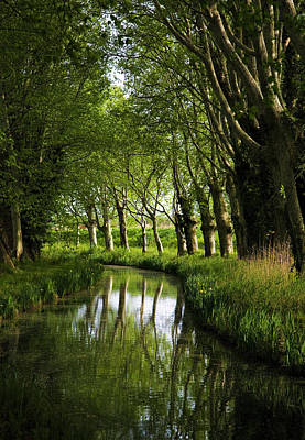 Lime Trees On Feeder To Canal Du Midi Art Print by George Munday