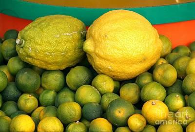 Limes And Lemons Print by Yali Shi