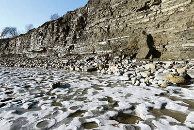 Limestone Pavement At Lyme Regis Art Print by Dr Morley Read