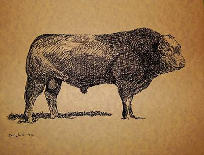 Selecting Drawing - French Limousine Bull by Larry Campbell
