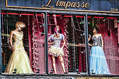 Photograph - Limpasse by Terry Cork