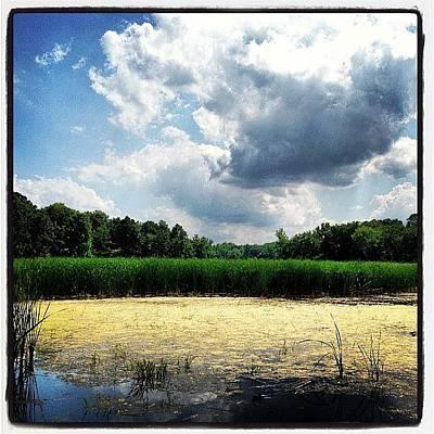 Marsh Photograph - Lincoln Marsh by Dwight Darling