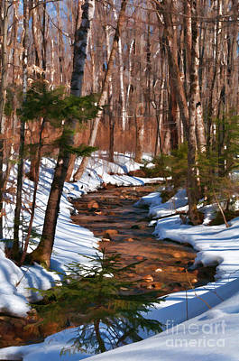 Photograph - Lincoln Woods Trail by Sharon Seaward