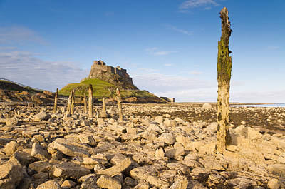 Monochrome Landscapes - Lindisfarne Castle and Stakes by David Head