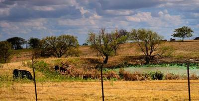 Photograph - Lindsay Countryside 1 by Ricardo J Ruiz de Porras
