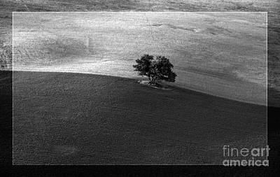 Heiko Koehrerwagner Photograph - Line Between Two Acres by Heiko Koehrer-Wagner