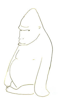 Drawing - Line Drawing Of A Western Gorilla by Jingfen Hwu